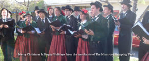 Old-Town-Montrose-Christmas6