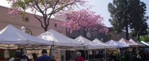 shop_montrose_slider1